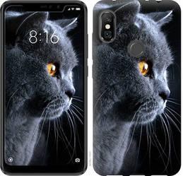 """Чехол на Xiaomi Redmi Note 6 Pro Красивый кот """"3038c-1551-328"""""""