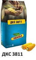 Купить Семена кукурузы ДКС 3811