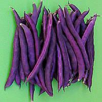 Семена овощной фасоли Пурпурная королева (5кг) Satimex