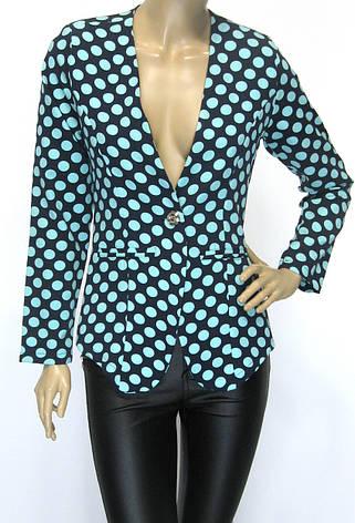 Жіночий короткий піджак в горошок Stars , фото 2