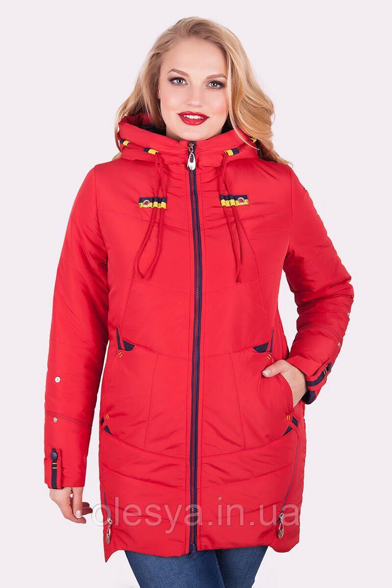 Осенняя женская куртка Софт Водоотталкивающая плащевка Размеры 50-60