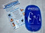 Криопакет гелевый Дельта-терм многоразовый, охлаждающий пакет размером 8*13 см., фото 3
