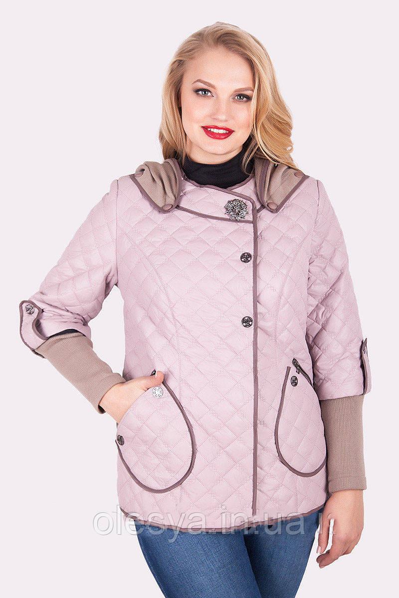 b98b5f8d8c9 Куртка женская весенняя стёганая Размеры 50- 60. В наличии