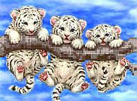 """Схема для вышивки бисером """"Милые тигрята"""""""
