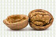 Волоський горіх Васіон (3-річний), фото 1
