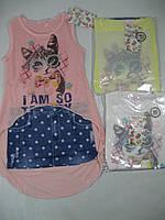 Платье-туника трикотажная для девочек, размеры 98-128 арт. CS-1905