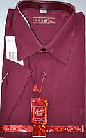 Мужская рубашка c коротким рукавом BENDU (размеры 38.39.40.42)