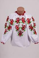 Блузка   для девочки  563 (С.Е.С.)
