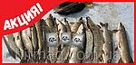 MegaMix - приманка для всесезонной рыбалки, фото 7