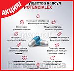 POTENCIALEX - препарат для повышения потенции , фото 7