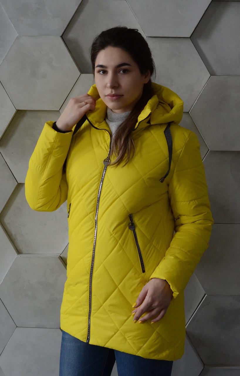 Демисезонная яркая куртка Алена, разные цвета