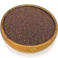 Горчица черная, семена горчицы, фото 1