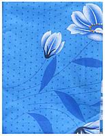 Квіти на голубому