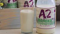 Fonterra регистрирует фермы для поставок a2 молока