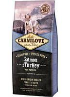 Сухой корм Сухой корм Carnilove Puppy Salmon & Turkey для щенков всех пород 12