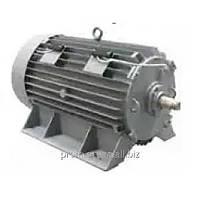 Электродвигатель высоковольтный ДАМШ