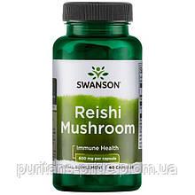 Гриб рейші, Swanson, Reishi Mushroom, 600 мг, 60 капсул