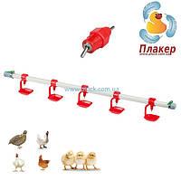 Система ниппельного поения птицы в сборе (ниппельные поилки 360) для перепелов, кур, бройлеров