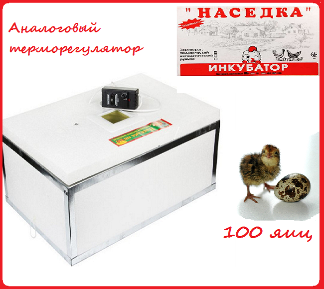 """Инкубатор """"Наседка"""" 100 яиц (аналоговый терморегулятор) механический переворот"""