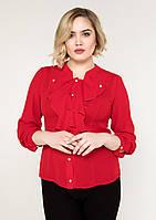 36aa3bf5c11 Блуза с жабо женская нарядная шифоновая блузка больших размеров (батал)