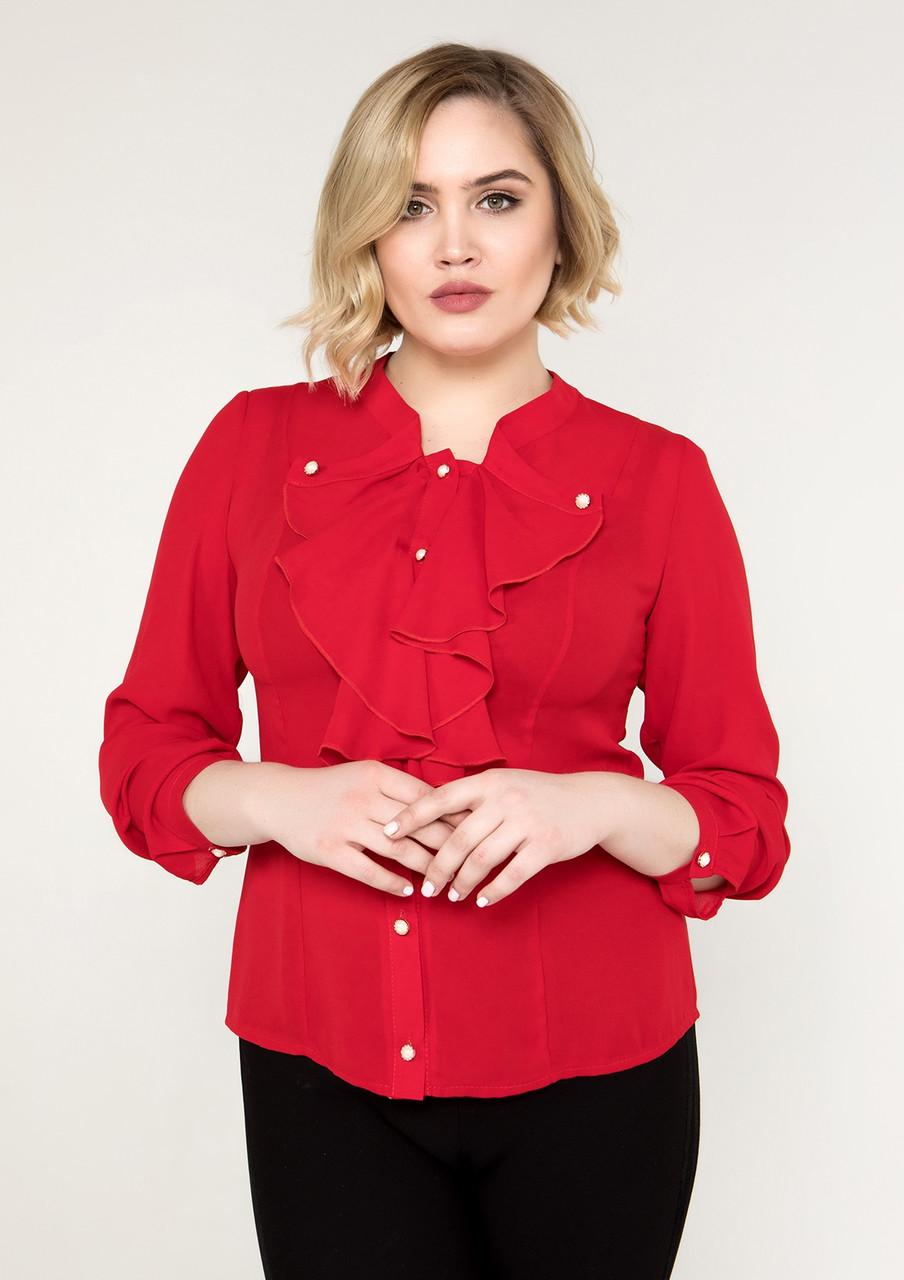 ac0ce7e61b8 Блуза с жабо женская нарядная шифоновая блузка больших размеров (батал)