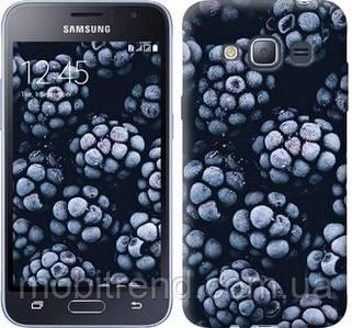 Чехол на Samsung Galaxy J1 (2016) Duos J120H Морозная ежевика