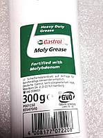 Смазка универсальная Castrol Moly Grease (0,3кг), фото 1