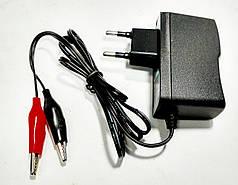 Зарядное устройство 1 Amp импульсное для аккумуляторов