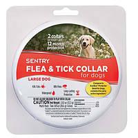 Sentry Flea&Tick Large СЕНТРИ ошейник от блох и клещей для собак крупных пород, 6 месяцев защиты, 56 см, 2 шт.