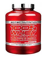 Сывороточный протеин Scitec Nutrition - 100% Whey Protein Professional (2350 грамм) chocolate/шоколад