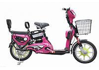 Электровелосипед ELECTRO KIWI, фото 1