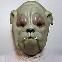 Маска собаки на Хэллоуин