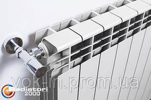 Radiatori 2000 Биметаллический радиатор Xtreme 500, фото 2
