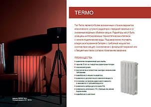 Чавунний радіатор VIADRUS Termo 623/095, фото 2