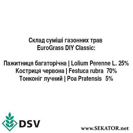 Газонна трава DSV EuroGrass Classic (Класична), 10 кг (Німеччина), фото 2
