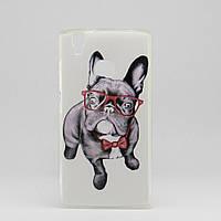Чехол Print  для Doogee x5 max / х5 макс pro силиконовый бампер Dog