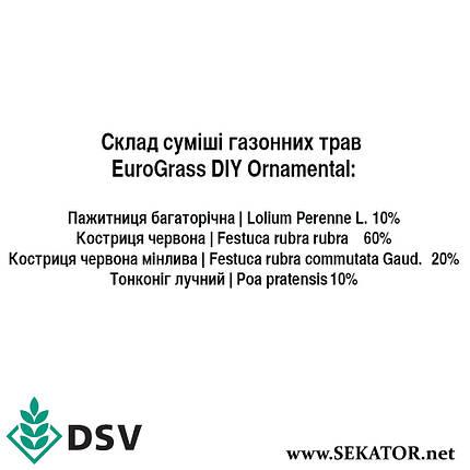 Газонна трава EuroGrass Ornamental / Декор, 10 кг (DSV, Німеччина), фото 2