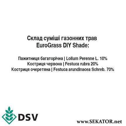 Газонна трава DSV EuroGrass Тіньова, 10 кг (Німеччина), фото 2