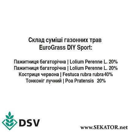Газонна трава трава EuroGrass Sport / Cпорт, 10 кг (DSV, Німеччина), фото 2