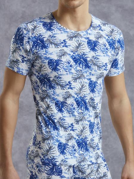 Мужская цветная футболка Doreanse 2540
