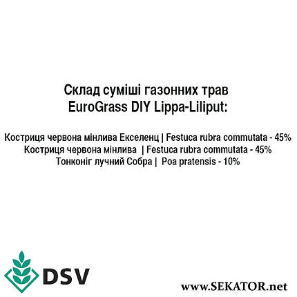 Газонна трава DSV EuroGrass Ліппа Ліліпут, 10 кг (Німеччина), фото 2