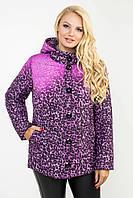 Модная женская демисезонная куртка в 2х цветах Ml-105 размеры 52-62