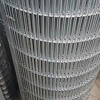 Сетка сварная оцинкованная, Ячейка 12х75 мм. Диаметр 2,5 мм., фото 1