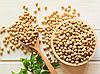 СОЯ Мікрозелень, боби органічної сої для пророщування 200 грам