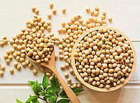 СОЯ, бобы органической сои для проращивания 200 грамм
