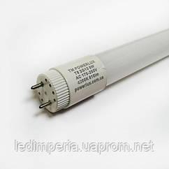 Лампа LED T8 9W 220V 600mm 4200K стекло 2 - G13 TM POWERLUX