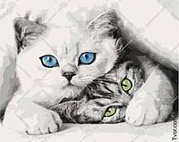 Картина по номерам Кошечки 3