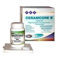 CERAMCORE B (Керамкор В) с серебром 30г.