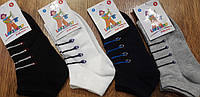 """Детские носки,сетка""""LAKELAND"""",Турция,мальчик, фото 1"""