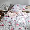 Комплект постельного белья Фламинго с горошком (полуторный) Berni, фото 3